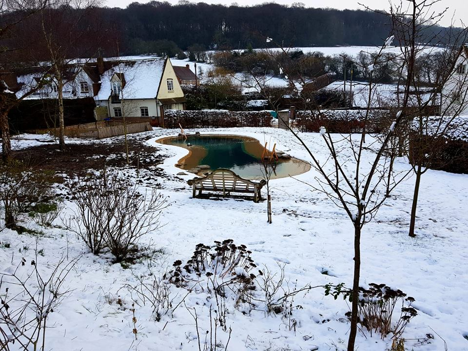 Gartenart Swimming ponds