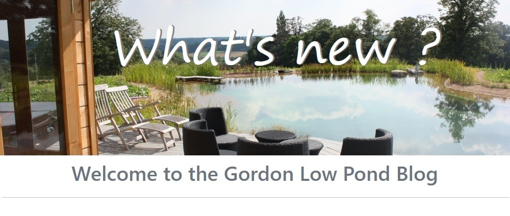 welcome to the gordon low pond blog